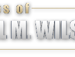 The Washington Law Office Of The Law Offices of Dr. Michael M. Wilson, M.D., J.D & Associates.